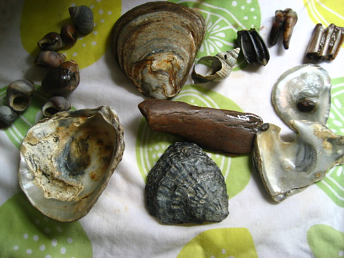 Treasure from the Thames