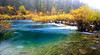 somewhere in Jiuzhaigou (peacy98) Tags: autumn colorful asia tiger sichuan jiuzhaigou tigerlake hổ cửutrạicâu