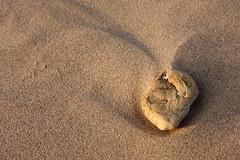 Stone (MrPhilDog) Tags: uk beach stone canon eos pebble 1750 tamron wallasey wirral newbrighton a16 40d tamronspaf1750mmf28xrdiiildasphericalif canoneos40d camera:lens=tamronspaf1750mmf28xrdiiildasphericalif
