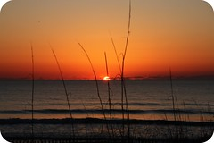 NC - Well, It's Another Sunrise Shot (scott185 (the original)) Tags: sunrise nc northcarolina atlanticocean carolinabeach seaoats newhanovercounty vosplusbellesphotos