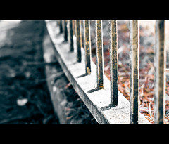 Around The Bend (Komatoes) Tags: uk bridge light white blur texture up leaves metal photography foot 50mm photo blurry nikon shadows dof close bokeh picture dirty explore devon photograph walkway exeter shallow railing f18 railings 60 fifty nifty d40 nikond40 nifftyfifty