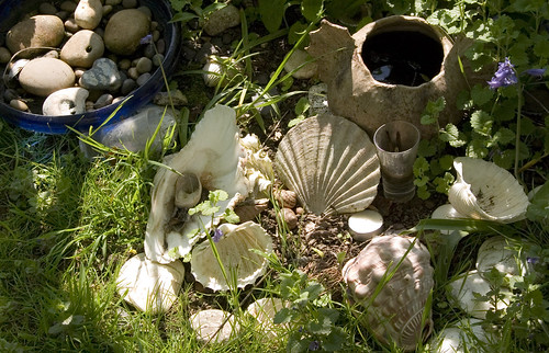 Shells and Pebbles with Pot