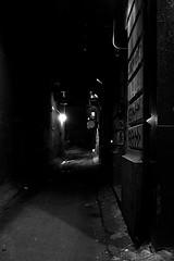 250/365 dark alley