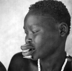 Labrets. Africa in the early 1940s. (gbaku) Tags: pictures africa woman west history photo women photos native african femme central picture historic photographs photograph westafrica tropical afrika historical anthropologie artifact artifacts anthropology femmes labret artefact africain afrique ethnography geschichte ethnology artefacts africaine westafrican ethnologie labrets classicblackwhite afrikas ethnoarchaeology