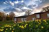 Wake up to Spring (edmundlwk) Tags: flowers clouds spring coventry accomodation hurst universityofwarwick daphadils canon450d tokina1116mmf28 edmundlim