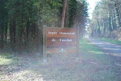 op weg naar de  Abdijruines van Vauclair (wandelwereld) Tags: van vauclair gr12 abdijruines
