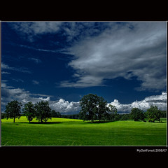 Clouds, Meadows and Trees (MyOakForest) Tags: road trees clouds bayern bavaria oberbayern upperbavaria meadow wiesen wolken bume platinumheartaward