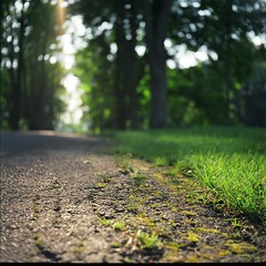 (Inside_man) Tags: 120 6x6 tlr film grass sunshine mediumformat colorful minolta bokeh path crack asphalt autocord minoltaautocord hbw bokehlicious