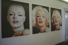 Marilyns von Corina Holthusen