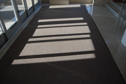 PCB4 - carpeted shadow play