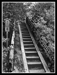 Kinkakuji - the stairway to the spring