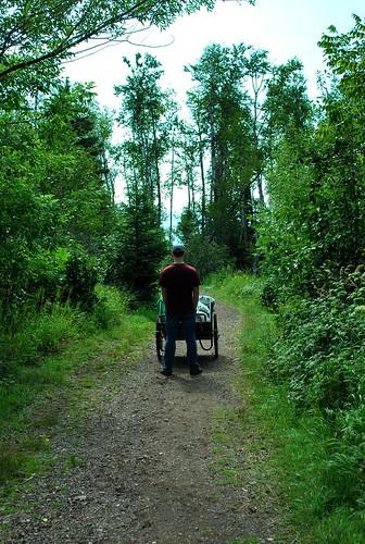 cart away