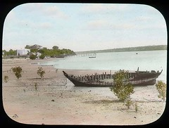 View on river shore (The Field Museum Library) Tags: africa expedition kenya 1906 mammals 1905 mombassa lanternslide britisheastafrica carlakeley zoologyexpedition handcoloredglasslanternslide