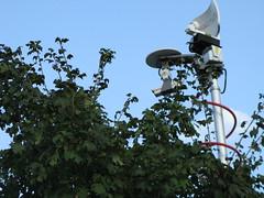 Treetop Mast
