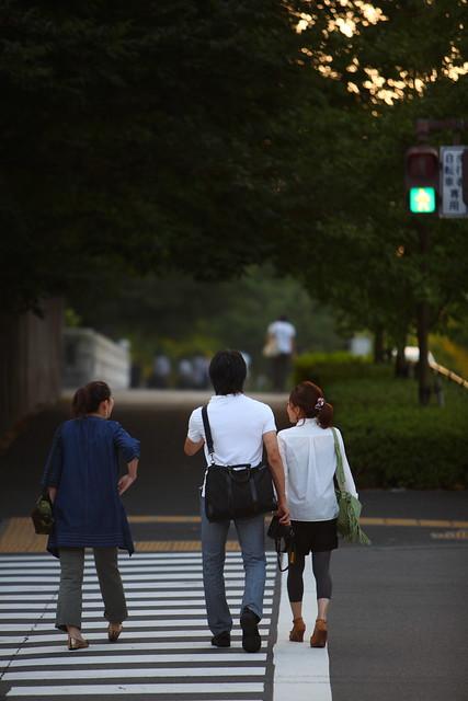 夕暮れの横断歩道
