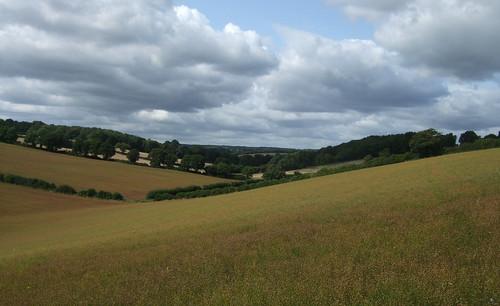 chartridge-asheridge