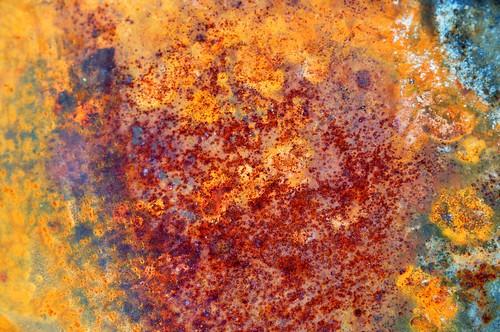 Rust:  September 19, 2009
