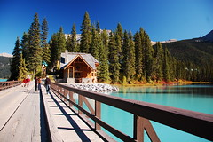 Emerald Lake 1 - Yoho National Park (renata_souza_e_souza) Tags: trip travel blue vacation sun holiday canada mountains green fall nature water field sunshine landscape nikon bc landmark paisagem september viagem nikkor vr yoho 18105 torquoise yohonationalpark d40 aplusphoto 18105vr