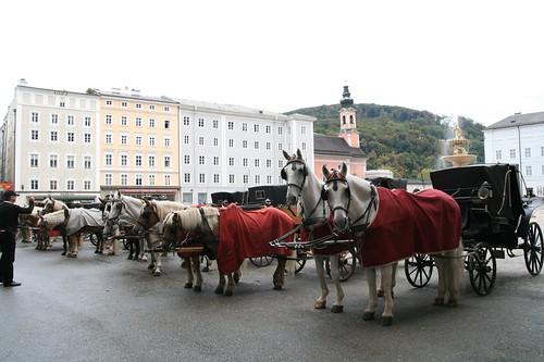 2009-10-11 Salzburg 083
