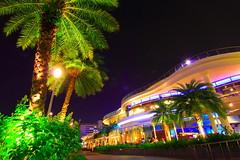 Fine Dinning (Mel Mijares) Tags: city longexposure trees party bulb bar dinner foods bars singapore harbourfront nightlife reggie vivo reastaurant resataurant vivocity finedinning biggestmallinsingapore singaporesbest