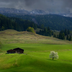 A touch of light on the green field in upper Austria (Bn) Tags: sky panorama white mountain snow alps tree salzburg green nature field rain bike clouds race dark geotagged cycling austria goldberg topf50 tour mountainbike glacier alpine valley cycle biking gradien
