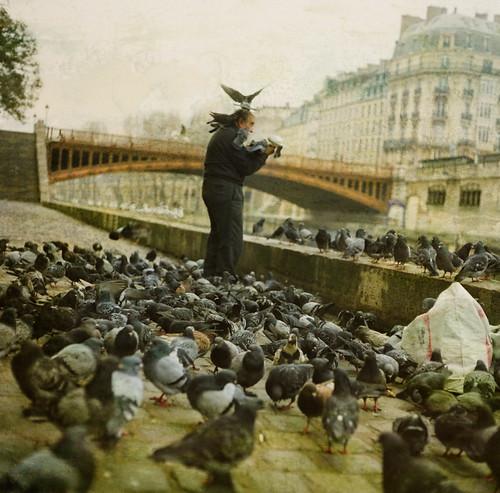 Birdman of Paris