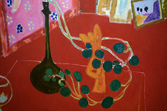Matisse, Nasturtium Cuttings