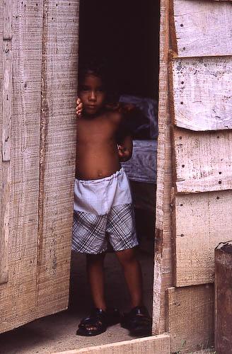 Cuba: fotos del acontecer diario - Página 6 3229960323_d8cb356cc1_o