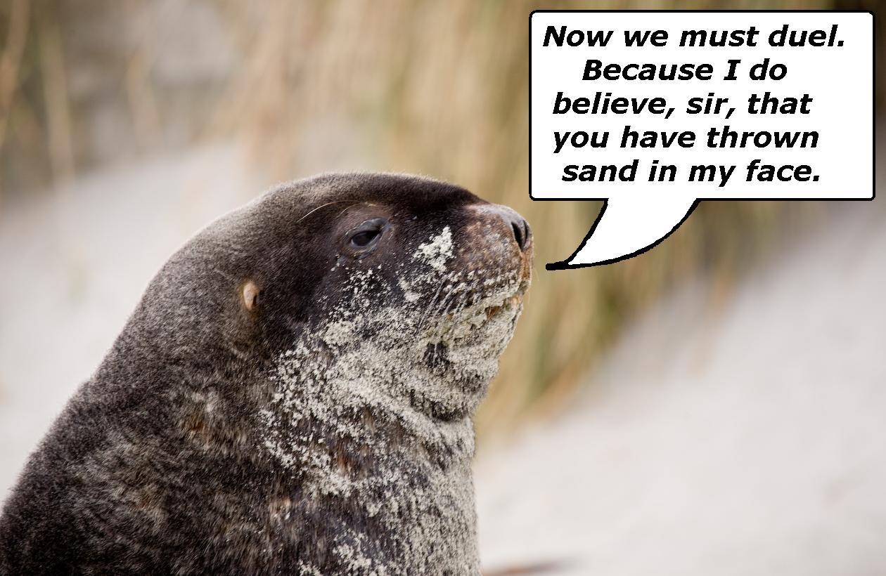 Sand Seal