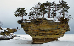 Turnip Rock, Port Austin, Michigan (jensenl) Tags: winter michigan thumbnail lakehuron portaustin turniprock