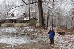 Mom's house (laurienrick) Tags: ice nature icestorm damage arkansas naturaldisaster springdale january2009 icestorm2009