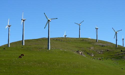 Green Hills, Windmills