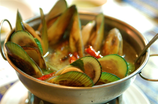 famous new zealand mussels