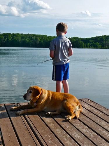 a boy, a dog and a lake