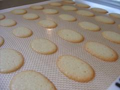milan_cookies4