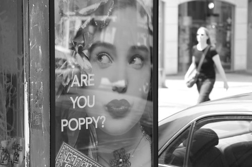 Are You Poppy?