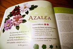 Azalea: Paper Bouquet