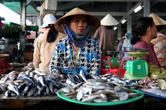 Fish seller  Hoi An (Jules1405) Tags: world travel woman fish hat asian asia vietnamese market an vietnam viet asie march nam hoi asiatique conic reflectionsoflife vietnamien lovelyphoto jules1405 unseenasia