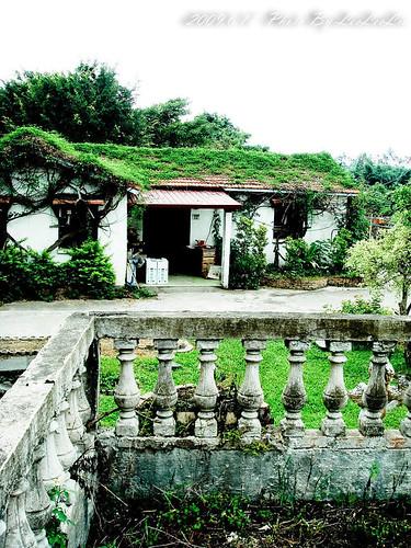 鬱金香花園夢幻城堡|民宿 有機香草 可愛動物