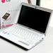 LG Netbook x110