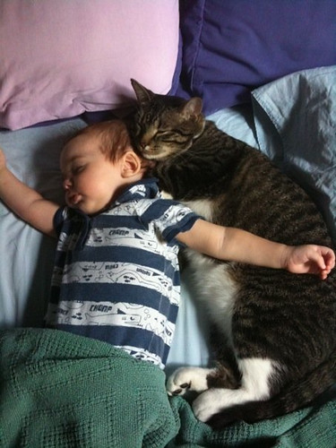 Finn & Zippy