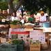 Mercado Pochote-Xochimilco