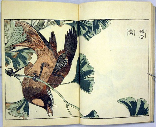 Katyozu birds and flowers album 1805