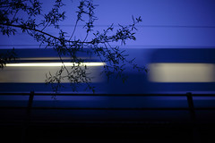 reservoir train (morf*) Tags: uk bridge blue shadow england sky abstract blur tree london train branch trains calm reservoir trainwindows walthamstowmarshes