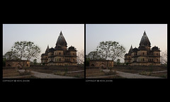 inflorescene, orchha (nevil zaveri) Tags: flowers trees india tree heritage abandoned architecture landscape photography blog 3d ruins photographer photos dusk stock images stereo mausoleum photographs photograph mp monuments zaveri tombs stockimages pradesh travelogue nevil madhyapradesh 3dimensional orchha madhya cenotaphs inflorescene bundela nevilzaveri