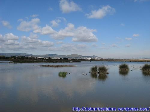 Reserva Natural do Delta do Llobregat