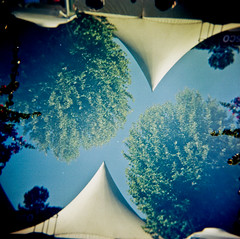 Up side down? (Seorita A.) Tags: 6x6 film analog square xpro crossprocessed doubleexposure toycamera expired atalaia amora seixal outdated pcp holga120gcfn festadoavante fujichromeastia100frap100f ptpwphotowalk14