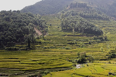 China, Yunnan : southern silk route #9 (foto_morgana) Tags: china nature landscape asia scenic panoramic yunnan mountainous ruili terracedfields topazdetail