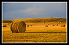 Long Shadows (stevenbulman44) Tags: landscape gold farm land hay fotografia bale goldstar mywinners worldlandscapes impressedbyyourbeauty