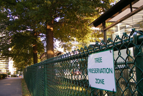 Tree Preservation Zone